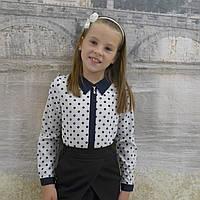 """Блузка для девочки """"Планка-горох""""(длиный рукав)"""