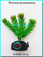 Растение Атман S-006B, 10см, фото 1