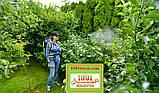 Опрыскиватель садовый Marolex Electric VX 20 л., фото 4