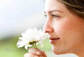 Обоняние или как натренировать нос, чтобы подбирать себе правильные ароматы.