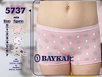 Подростковое белье оптом. Шортики для девочки ТМ Baykar р. 6 (158-164см)