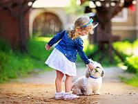 Стоит ли заводить домашнее животное ребенку? Как влияют домашние животные на психическое развитие детей?