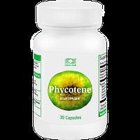 Фикотен (Phycotene)