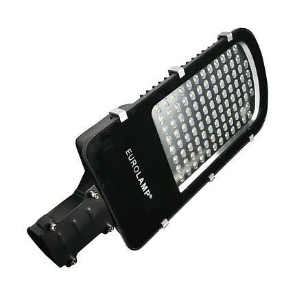LED Светильник уличный EUROLAMP SMD черный 100W 6000K classic, фото 2