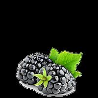 TPA/TFA - Blackberry Flavor (Ежевика) 5