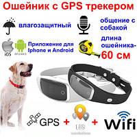 GPS трекер ошейник для собак элитный, водонепроницаемый с приложением для Iphone/android смартфонов (FRT-S1)