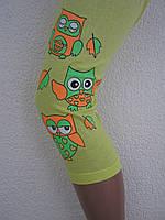 Треси з малюнком для дівчинки (3-4 роки)