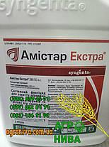 Фунгицид Амистар Экстра Syngenta, фото 3
