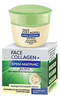 Крем-матрикс для лица для жирной и нормальной кожи FACE Collagen+