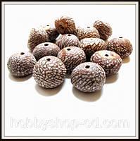 Бусины-орехи Кукуи 1,8-2,5 см (20 шт)