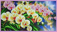Набор для вышивания бисером «Орхидеи в саду»