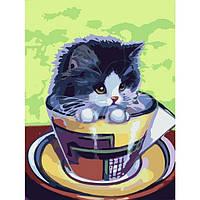 """Картины по номерам / обложка. Тварини """" Кошеня в чашці"""" 30х40см арт. КНО2451"""