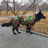 """Одежда Комбинезон для Собак крупных пород  """"Powerful Hunter"""", дождевик большая собака"""