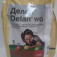 Фунгицид Делан 70% в.г. 1 кг