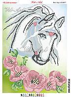 Білий коник