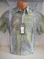 Рубашка мужская ST. Re'mo короткий рукав, газета 001