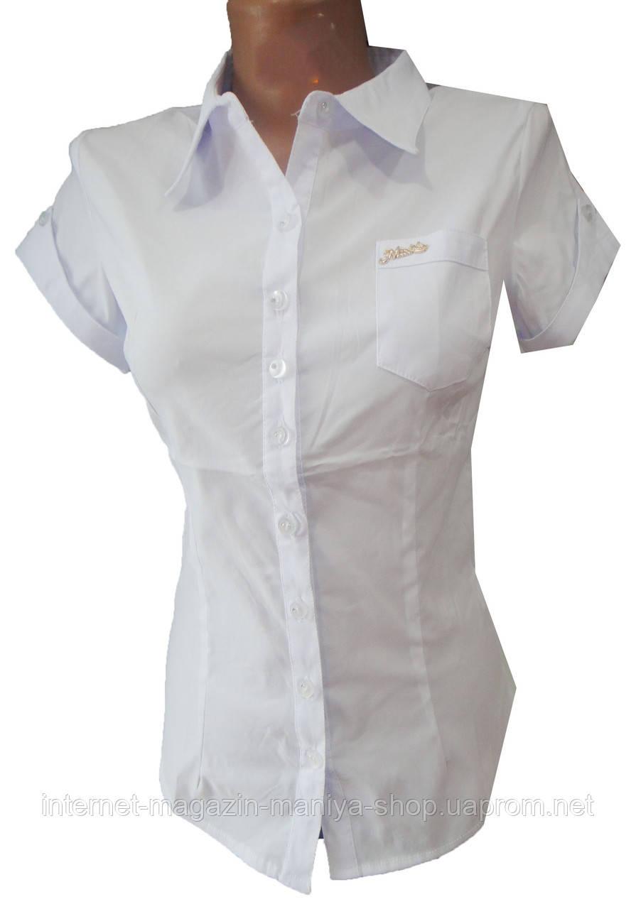 Рубашка женская 8005 коротнкий рукав норма