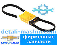 Ремень приводной поликлиновой Авео (ContiTech) Chevrolet/NISSAN.6PK884