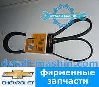 Ремень приводной поликлиновой (ContiTech) Chevrolet/Opel.5PK1570