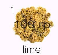 МОХ СТАБИЛИЗИРОВАННЫЙ (ЯГЕЛЬ), Lime 01, 100 ГРАММ