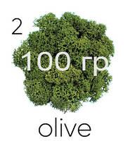 МОХ СТАБИЛИЗИРОВАННЫЙ (ЯГЕЛЬ), Olive 02, 100 ГРАММ
