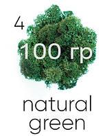 МОХ СТАБИЛИЗИРОВАННЫЙ (ЯГЕЛЬ), Natural green 04, 100 ГРАММ