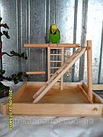 Игровая площадка для попугая.