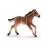 World of Horses- Жеребенок мустанга - Шлейх