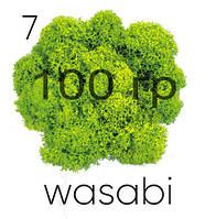 МОХ СТАБИЛИЗИРОВАННЫЙ (ЯГЕЛЬ), Wasabi 07, 100 ГРАММ