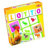 Тактика: Играть в Лото - Животные с фермы