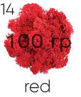 МОХ СТАБИЛИЗИРОВАННЫЙ (ЯГЕЛЬ), Red 14, 100 ГРАММ