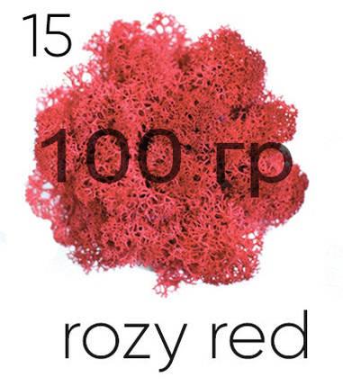 МОХ СТАБИЛИЗИРОВАННЫЙ (ЯГЕЛЬ), Rozy red 15, 100 ГРАММ, фото 2