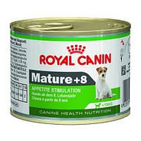 Royal Canin Mature +8 консерва для стареющих собак мелких пород