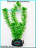 Растение Атман S-032B, 20см