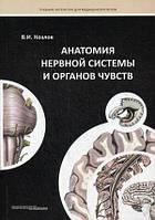 Козлов Анатомія нервової системи та органів чуття. Навчальний посібник