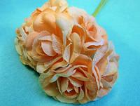 """Роза """"Двухцветная"""", упаковкой 36 шт Нежно-персиковая"""