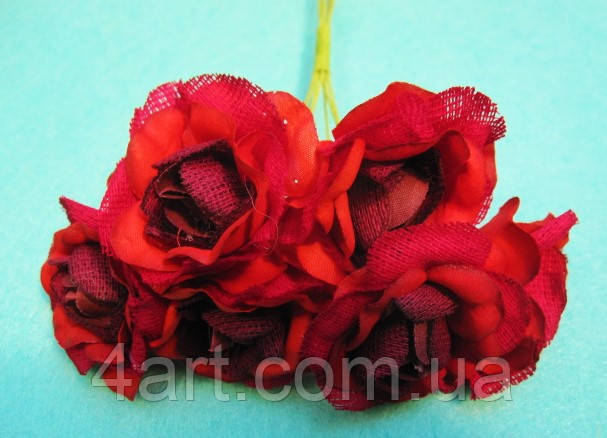 """Роза """"Двухцветная"""" уп. 36 шт. Красная"""