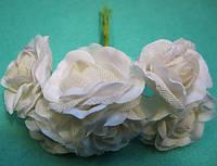 """Роза """"Двухцветная"""" уп. 36 шт. Белая"""