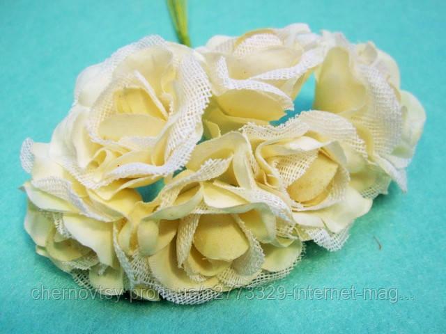 """Роза """"Двухцветная"""" уп. 36 шт. Бежевая"""
