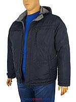 Синяя мужская демисезонная куртка Sooyt Fashion 228B/404 большого размера