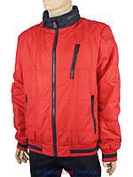 Мужская демисезонная куртка Malidinu 13882/80#+24# красного цвета