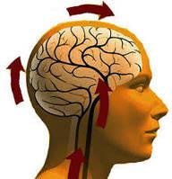 Лечение дистонии, депрессии, заболеваний сосудов мозга эфирными маслами. Лечение боли в сердце, инсульта.