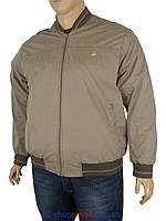 Демисезонная мужская куртка Dekons 4049 B в большом размере