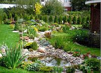 Что должно быть на каждом участке: 5 основных правил планирования сада.