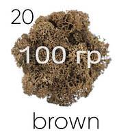 МОХ СТАБИЛИЗИРОВАННЫЙ (ЯГЕЛЬ), Brown 20, 100 ГРАММ