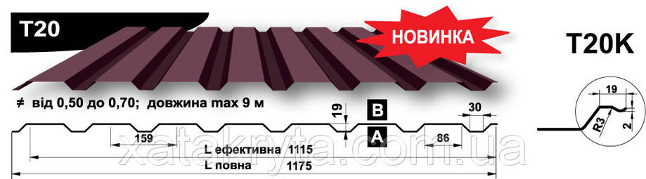 Профнастил Прушински  Т 20 цынк 0.45 мм, фото 2