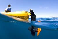 Човнові електродвигуни: готуємося до літньої риболовлі!