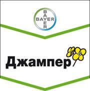 Рапс озимый BAYER Джампер