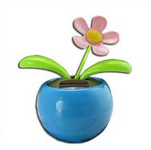 Сонячна квітка Синий