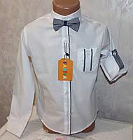Рубашка нарядная на мальчика с бабочкой  (рукав трансформер) 6,7,8,9 лет